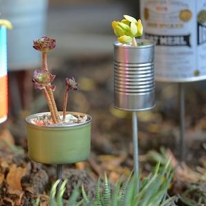Tiny Tin Planters